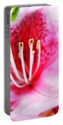 Pink Rhodie Flowers Art Prints Canvas Rhododendrons Baslee Troutman Portable Battery Charger