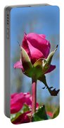 Pink Rose Against Blue Sky Iv Portable Battery Charger