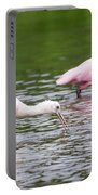 Pink Roseate Spoonbills Feeding Portable Battery Charger