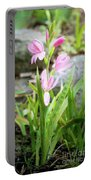 Pink Spring Bulb Portable Battery Charger