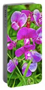 Pink Sweet Peas In Huntington Gardens In San Marino-california Portable Battery Charger