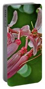 Pink Tropical Flower In Huntington Botanical Garden In San Marino-california Portable Battery Charger