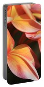 Pink Tropical Plumeria Makawao Maui Hawaii Portable Battery Charger