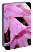 Pink Trumpet Lilies Portable Battery Charger