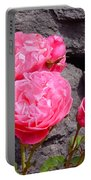 Pinks On The Rocks Portable Battery Charger