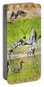 Pintail Take-off Portable Battery Charger