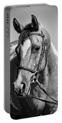 Pinto Pony Portrait Black And White Portable Battery Charger