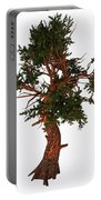 Pinus Aristata Tree Portable Battery Charger
