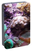 Pipe Fish And Sea Anemone  Portable Battery Charger