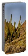 Pipe Organ Cactus At Sunrise Portable Battery Charger