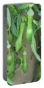Pitcher Plant Madness Portable Battery Charger