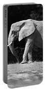Placid Pachyderm Portable Battery Charger