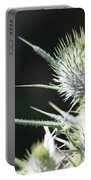 Plant 09-01-18 Portable Battery Charger
