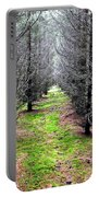 Planted Spruce Forest Portable Battery Charger