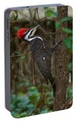 Plastic Wrapped Pileated Woodpecker Portable Battery Charger