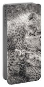 Playtime In Africa- Cheetah Cubs Acinonyx Jubatus Portable Battery Charger