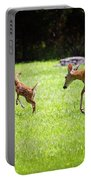 Playtime Portable Battery Charger