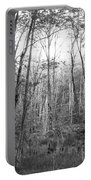 Pleasure Of Pathless Woods Bw Portable Battery Charger