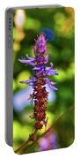 Plectranthus Caninus 002 Portable Battery Charger