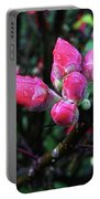 Plum Blossom 1 Portable Battery Charger