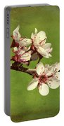 Plum Blossom 4 Portable Battery Charger