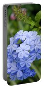 Plumbago Portable Battery Charger