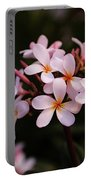 Plumeria Flowers Portable Battery Charger
