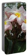 Plumeria In Pink 3 Portable Battery Charger