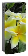 Plumeria In Yellow  5 Portable Battery Charger