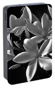 Plumeria Proper Evening Portable Battery Charger