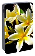 Plumeria Proper Portable Battery Charger