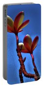 Plumeria Two Portable Battery Charger