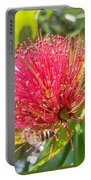 Pohutukawa Flower  Portable Battery Charger