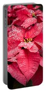 Poinsettia Morning Dew Portable Battery Charger