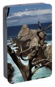 Point Lobos Rocks And Branches Portable Battery Charger