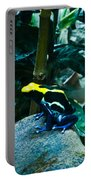 Poison Dart Frog Poised For Leap Portable Battery Charger