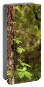 Poison Ivy Climbing Oak Tree Trunk Portable Battery Charger