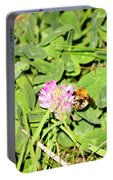 Pollen Collection Portable Battery Charger