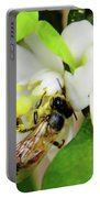 Pollen - Covered - Bee Portable Battery Charger
