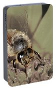 Pollinating Bee Portable Battery Charger