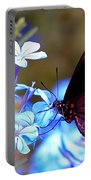 Polydamas Swallowtail Butterfly Portable Battery Charger