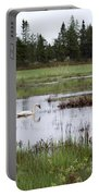 Pond And Swans Portable Battery Charger