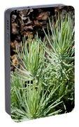 Ponderosa Pine 7 Portable Battery Charger