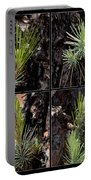 Ponderosa Pine Portable Battery Charger