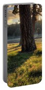 Ponderosa Pine Meadow Portable Battery Charger