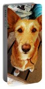 Pooch Portable Battery Charger