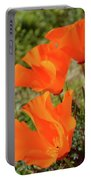 Poppies Antelope Valley Portable Battery Charger