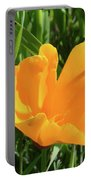 Poppy Portable Battery Charger