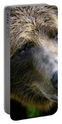 Portrait Of A Grizzly Portable Battery Charger
