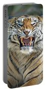 Portrait Of A Growling Tiger  Portable Battery Charger